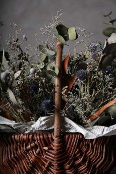 画像8: Ciliegio  / チリエージョ / CIL-F-0003 / Dried flower basket / #1 (8)